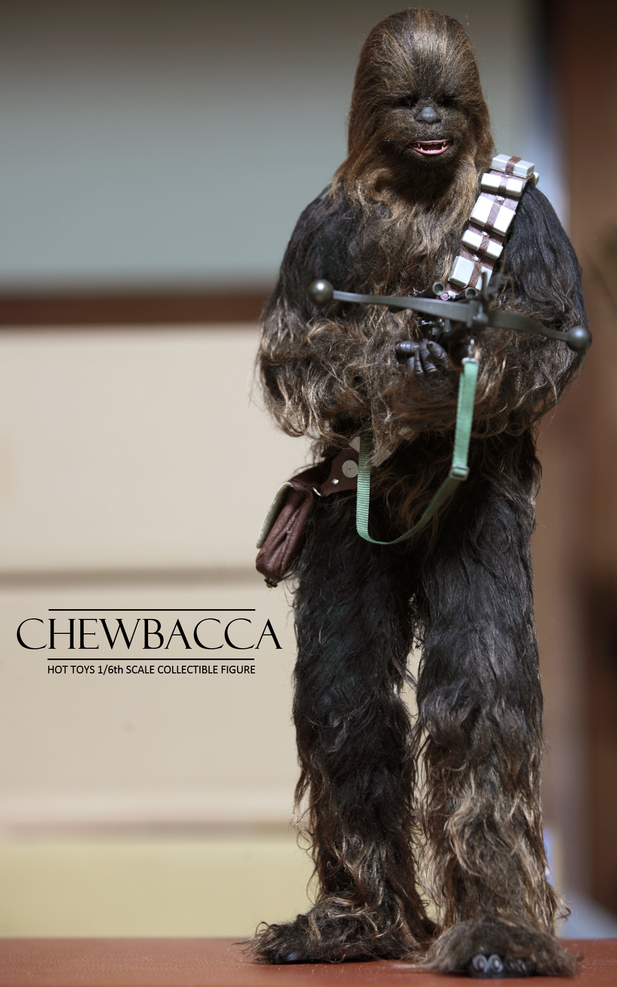 hottoys-star-wars-episode-IV-a-new-hope-han-solo-&-chewbacca set-picture15