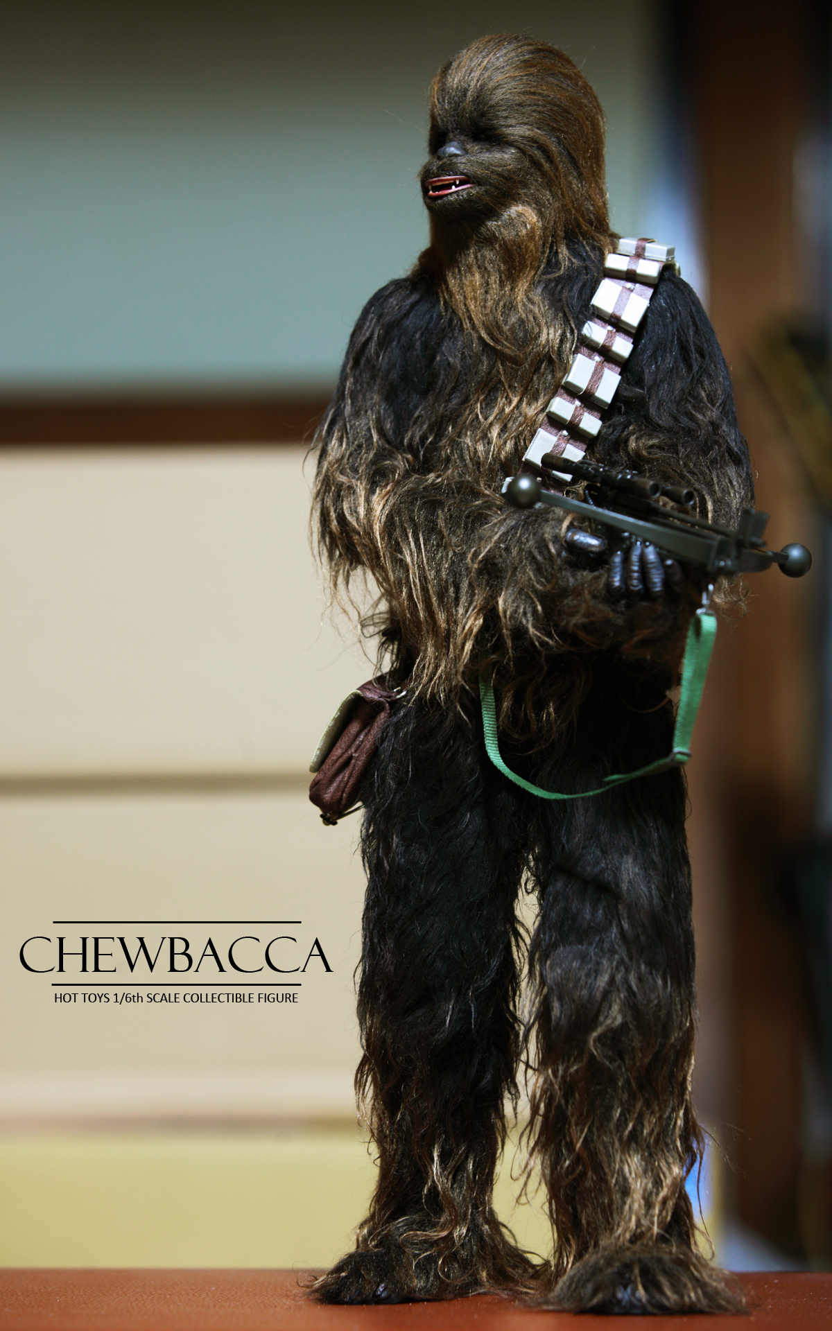 hottoys-star-wars-episode-IV-a-new-hope-han-solo-&-chewbacca set-picture18