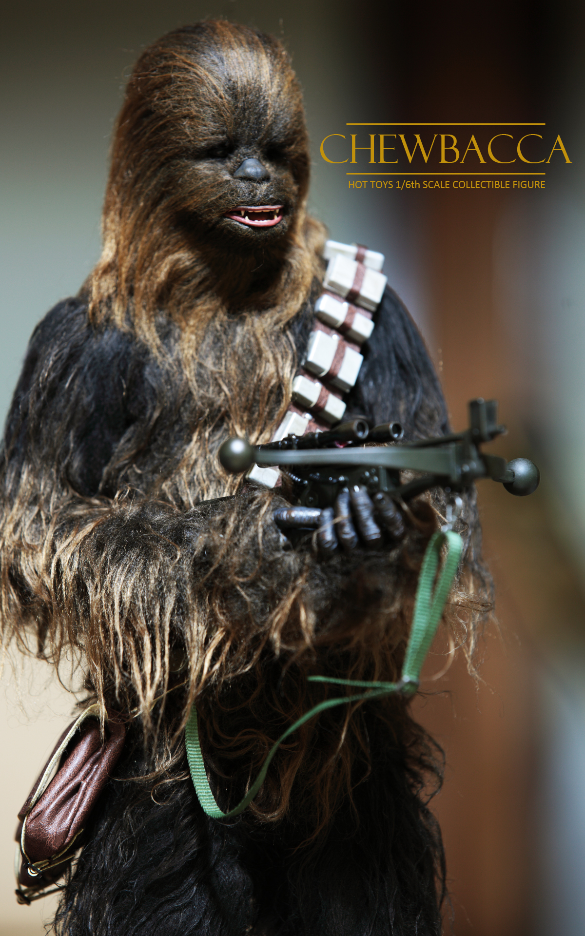 hottoys-star-wars-episode-IV-a-new-hope-han-solo-&-chewbacca set-picture20