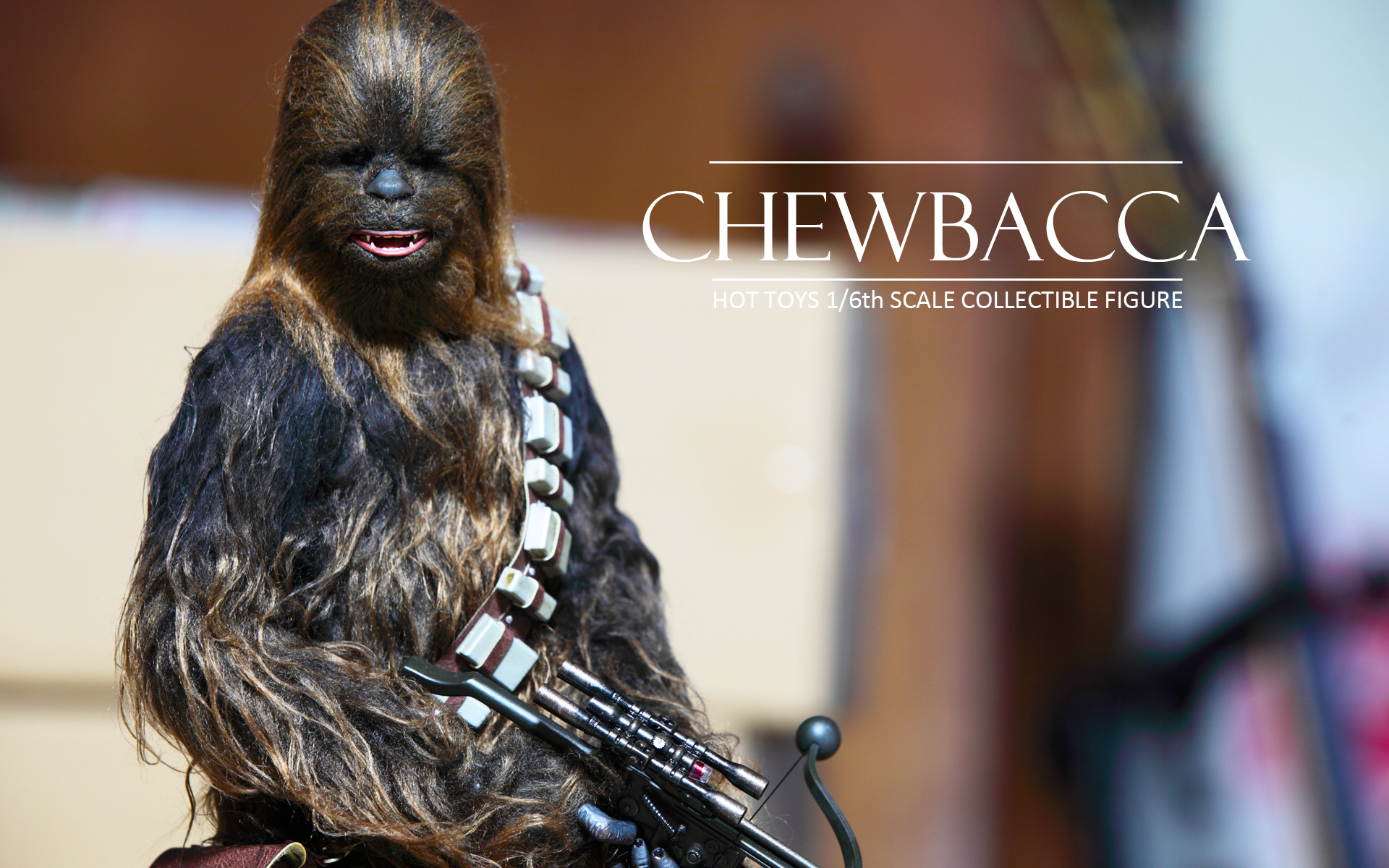 hottoys-star-wars-episode-IV-a-new-hope-han-solo-&-chewbacca set-picture24